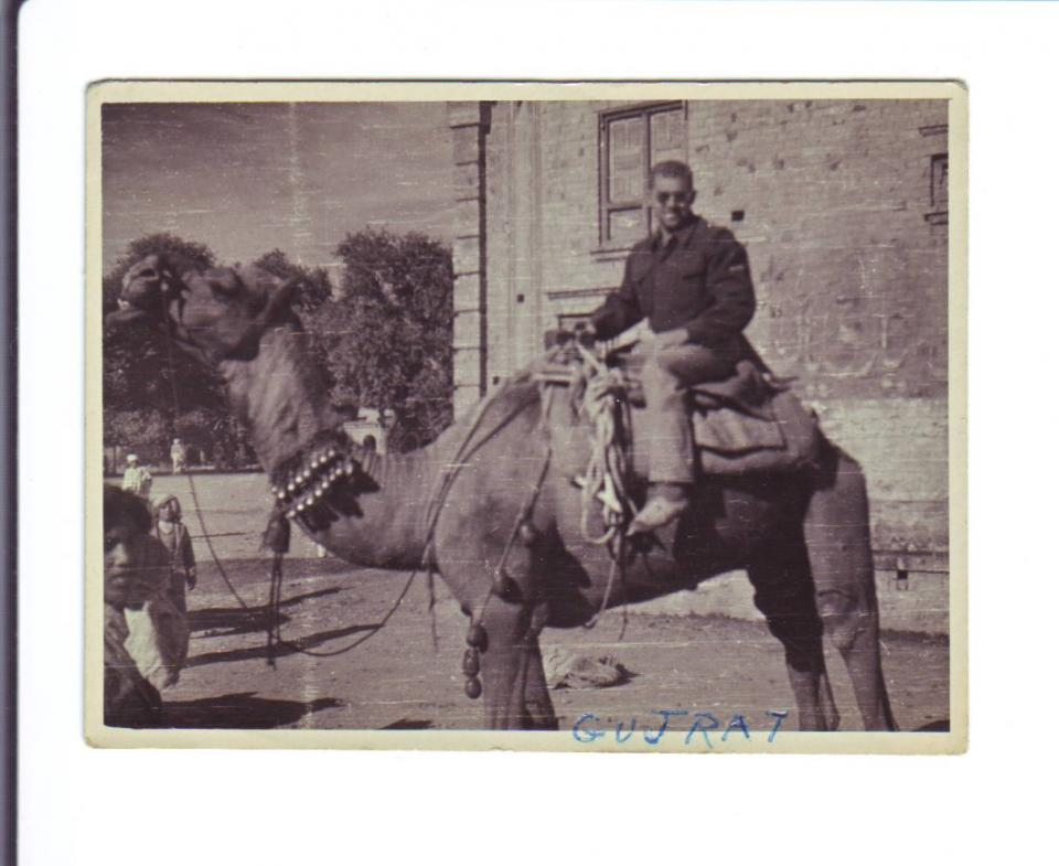 Photo #14 Gujarat India Joseph on Camel November 1944
