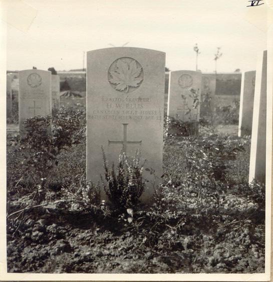 Ellis, Hadden W., Headstone.